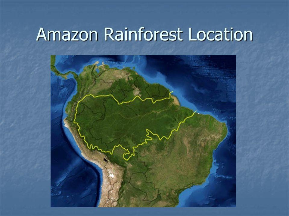 amazon rainforest location - 960×720