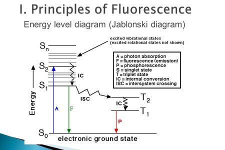 Interior internal conversion fluorescence 4k pictures 4k jablonski energy diagram fluorescence molecular luminescence ppt video online download internal conversion molecular expressions microscopy primer ccuart Gallery
