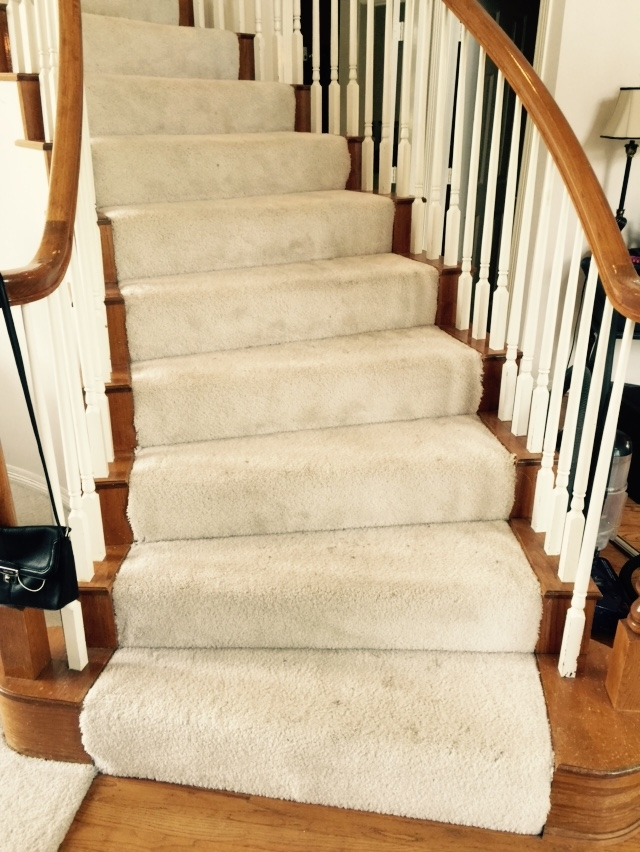 Should I Carpet My Stairs With The Same Carpet I Use Upstairs   Open Concept With Basement Stairs In Middle Of House   Dining Room   Ceiling   Feng Shui   Kitchen   Stair Case