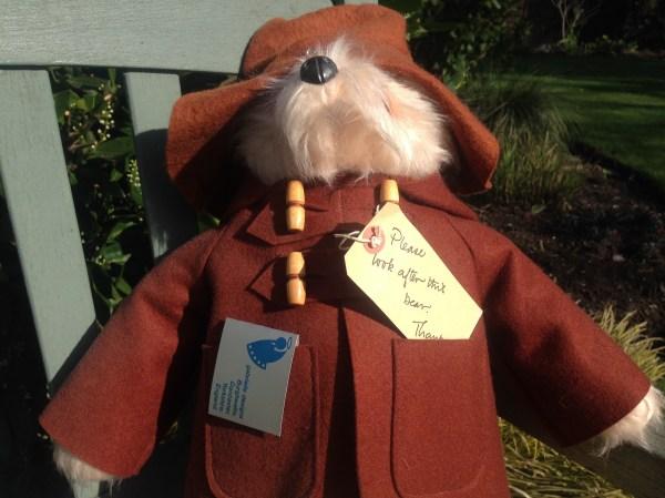 paddington bear kaufen # 70