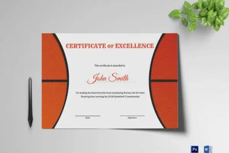 82  Free Printable Certificate Template   Examples in PDF  Word     Excellence Award Certificate Template Download