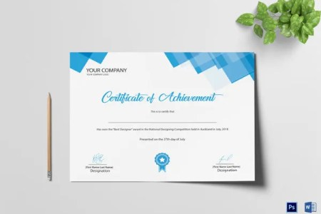 28  Professional Certificate Templates   DOC  PDF   Free   Premium     Professional Achievement Certificate Template