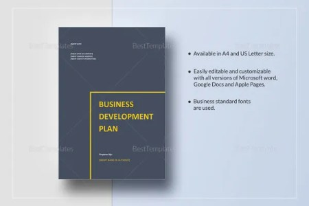 19  Business Plan Templates   Free Sample  Example  Format Download     Simple Business Development Plan