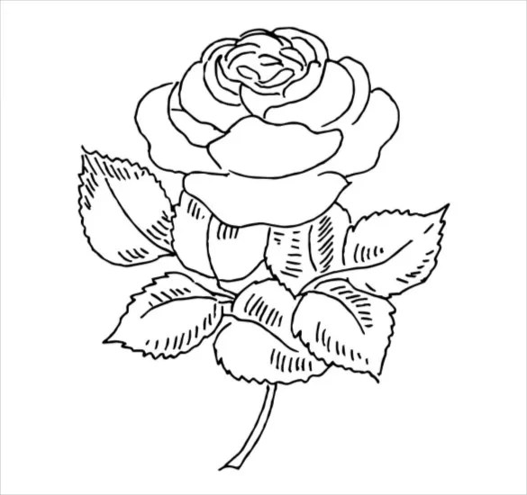 coloring pages pdf # 24
