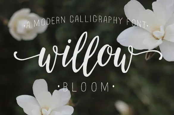 free wedding fonts # 21