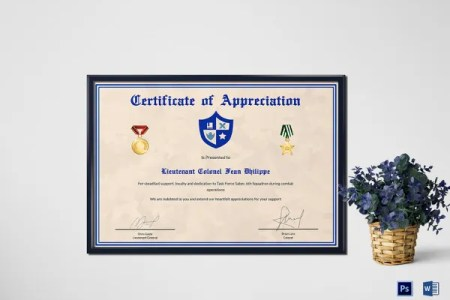 boss appreciation quotes and plaque wording ideas army certificate     army certificate of appreciation template