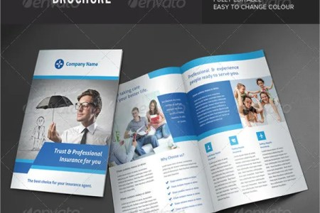 Insurance Brochure   17  Free Free PSD  Vector EPS  PNG Format     Insurance Corporate Brochure