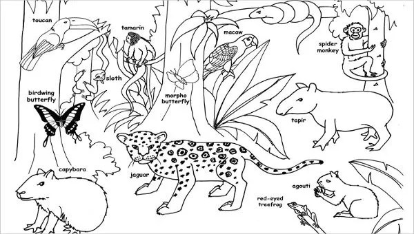 jungle coloring page # 8
