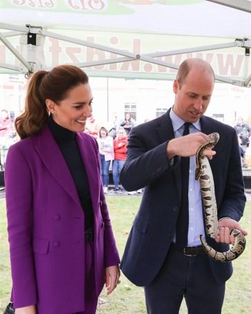 William e Kate Middleton, ecco perché sono «la coppia reale ideale»