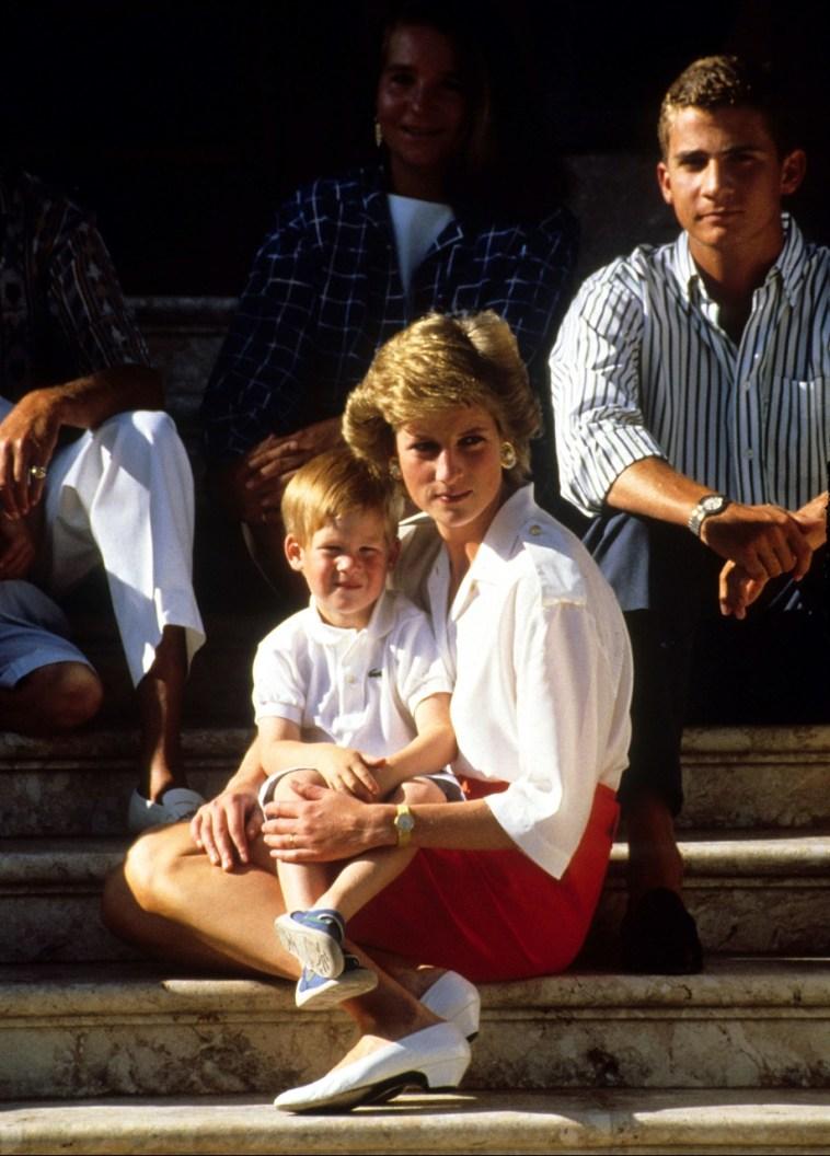 Lady Diana, che «avrebbe totalmente appoggiato Harry, un istintivo come lei»