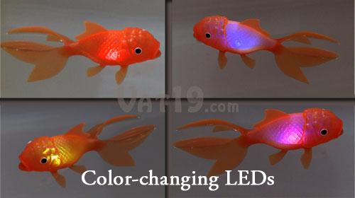 Color Changing Pool Light Bulb