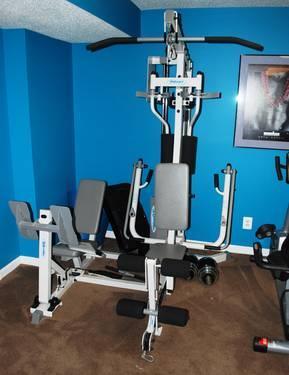 Hoist H 310 Multi Home Gym W Leg Press Amp Chrome Dumbell