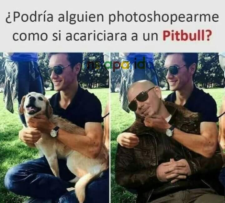 Worldwide Mr Pitbull Meme