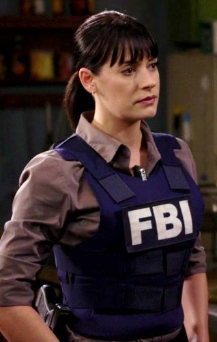 15 Agent Paget Brewster