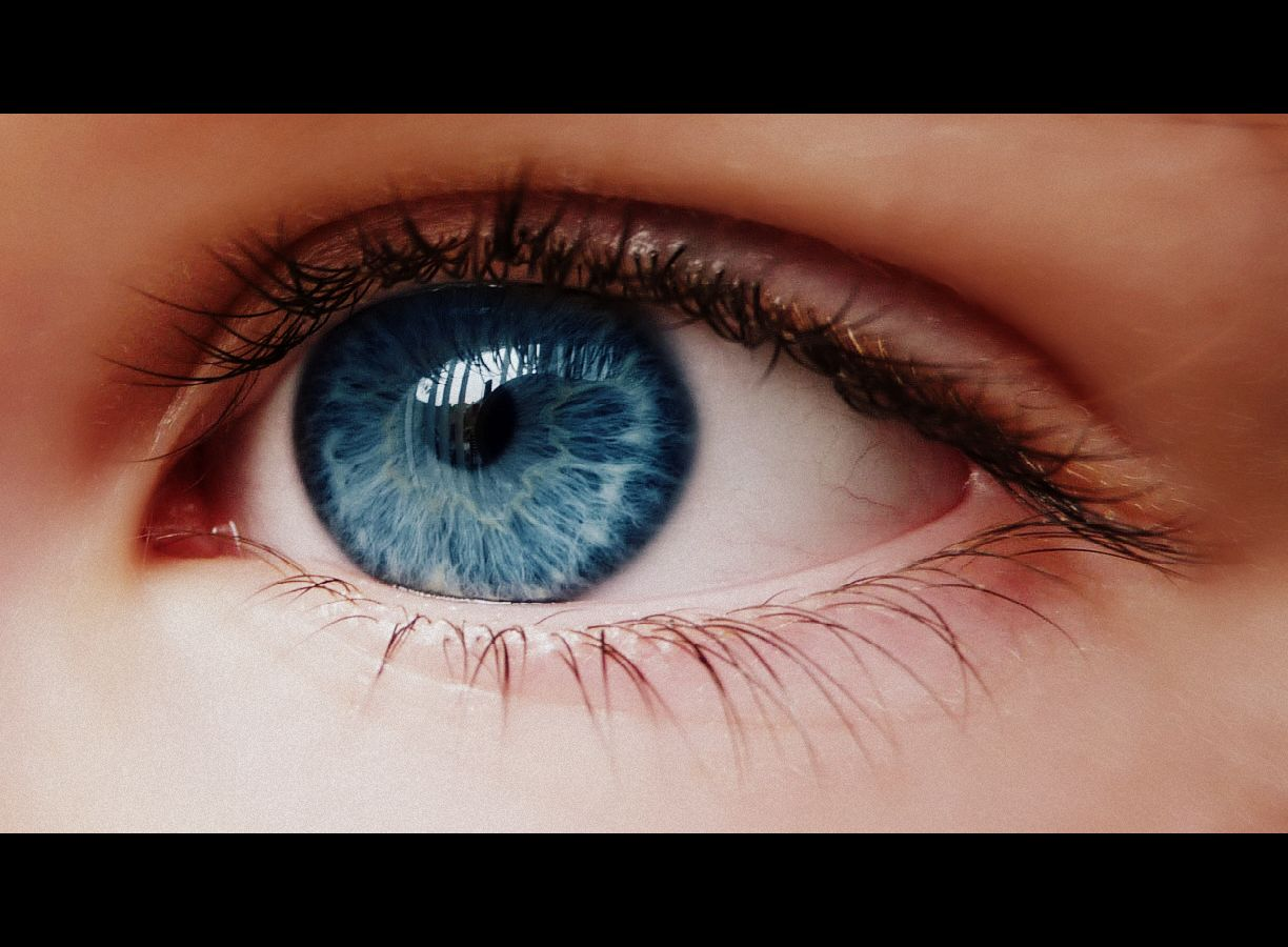 Bluest Eye Quotes