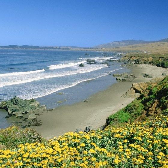 Beaches Near Cayucos California Usa Today
