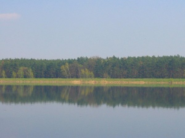 Farm Pond Tax Deduction