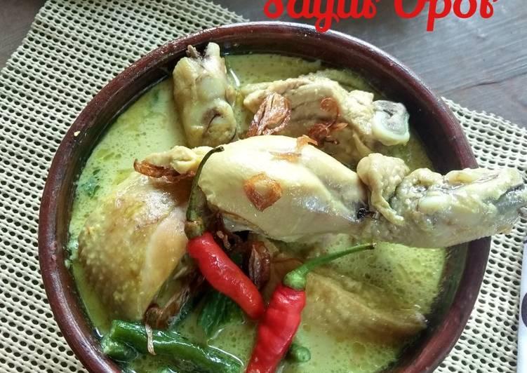 Resep Sayur Opor