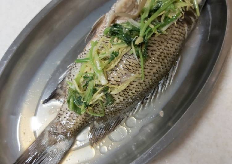 Resep Steam Ikan (Chinese Style)