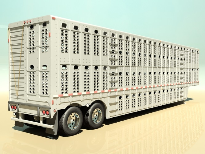 Livestock Trailer Lights