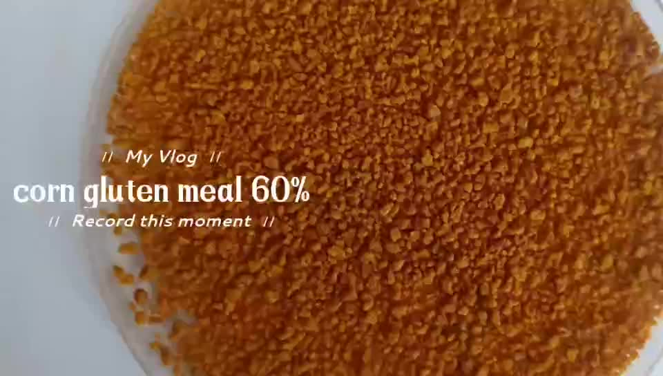 Good Quality Corn Gluten Meal For Animal Feed Best Price ...