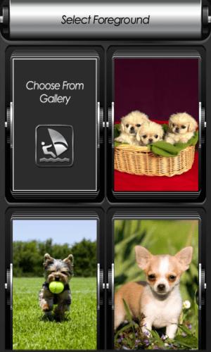 Android Puppy Zipper Lock Screen Screen 4
