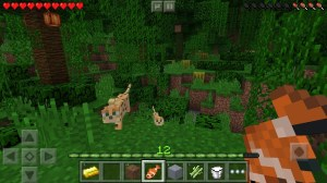 Android Minecraft: Pocket Edition Screen 12