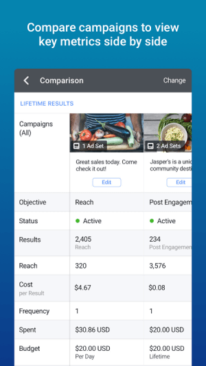 Android Facebook Adverts Manager Screen 3
