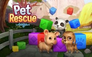 Android Pet Rescue Saga Screen 5