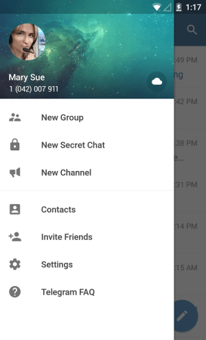 Telegram 1.0.1 Screen 12