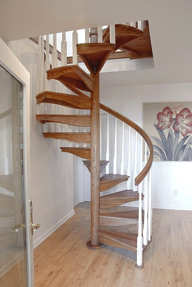 Spiral Staircase W 1L Salter Spiral Stair Wooden Frame   Wooden Spiral Stairs Design   Different Style   Circular   Curved   Space Saving   Easy Diy