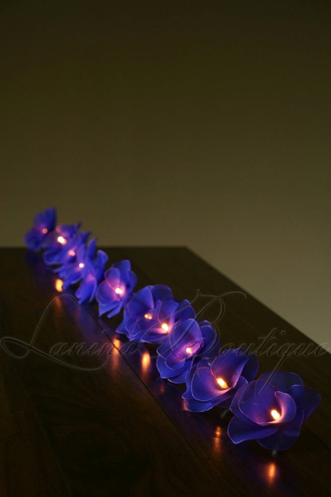 Led Blue String Lights