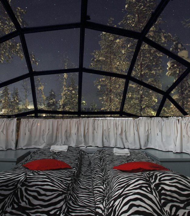 Northern Lights Dome Room