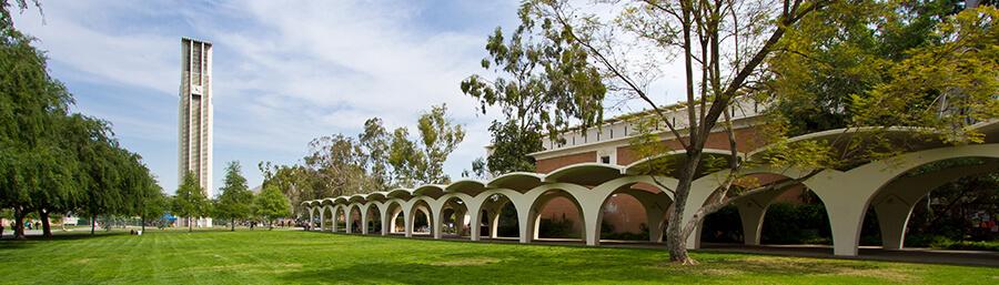 Calfresh Online Application Los Angeles