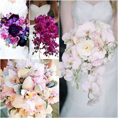21 Most Sun Kissed Flowers in Season for July Wedding   EverAfterGuide Orchid