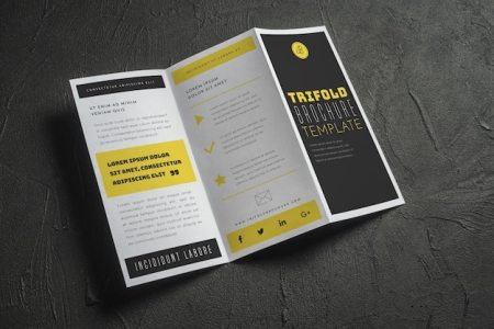 Tri Fold Brochure Vectors  Photos and PSD files   Free Download Open trifold brochure mockup