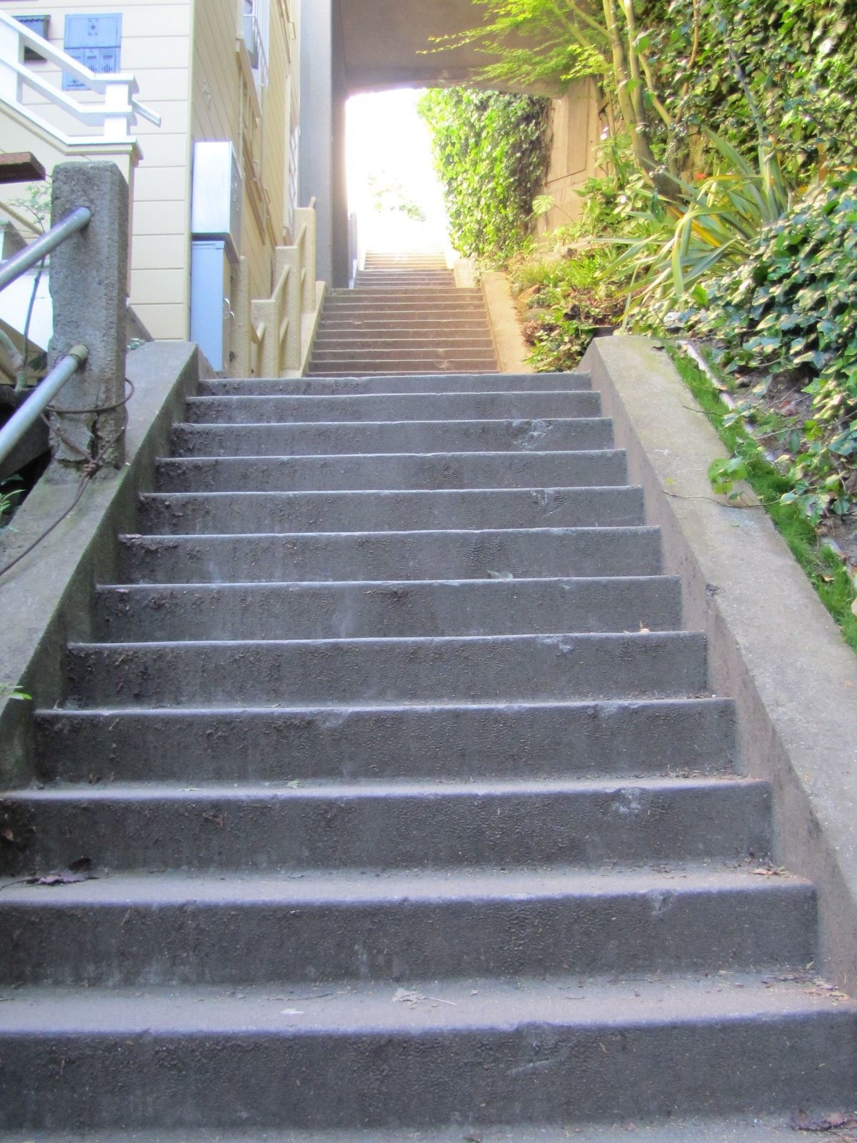 Lower Greenwich Stairway San Francisco Ca Outdoor | Outdoor Stairs Near Me