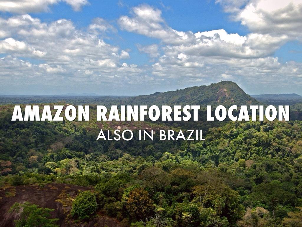 amazon rainforest location - HD1024×768