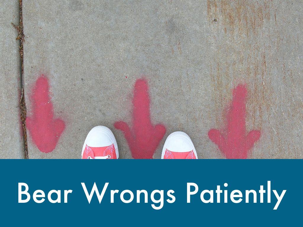 bear wrongs patiently - HD1024×768