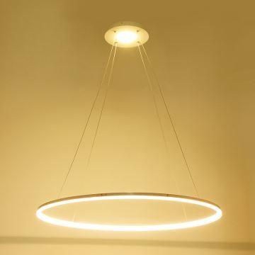 pendant halo lights # 1
