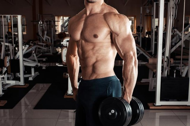 How To Bulk Up Without Gaining Belly Fat Livestrong Com