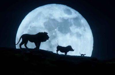 lion king online subtitrat # 42