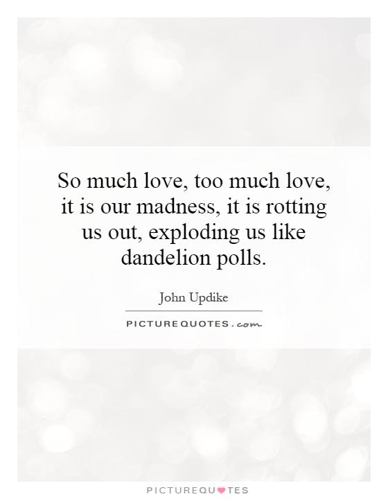 I Love Him So Much Quotes