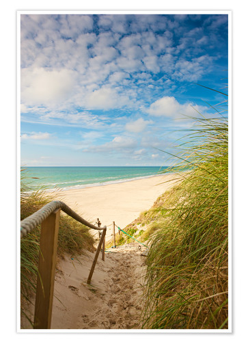 Narrow Path To The Beach Posters And Prints Posterlounge
