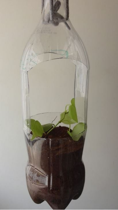 Making A Plastic Soda Bottle Hanging Planter Thriftyfun
