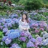 Olivia Liao