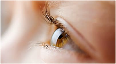Quiz  Eye Fact or Fiction     Eye Color  Color Blindness  Improve Eyesight Carrots help you see in the dark