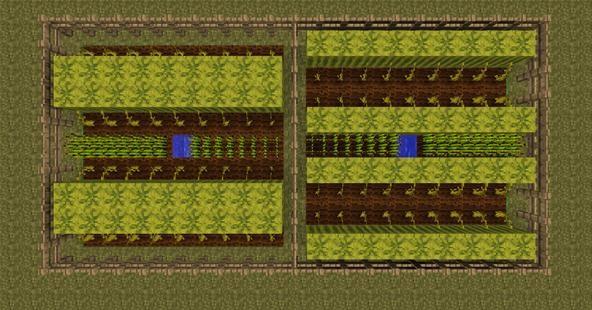 Ground Plots Above Garden