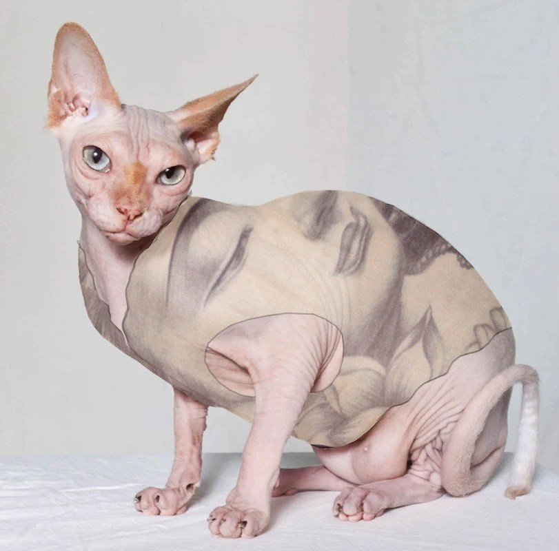 Sphynx Cat Clothes Shiva Tattcat™ Chinese Crested Dog Clothes