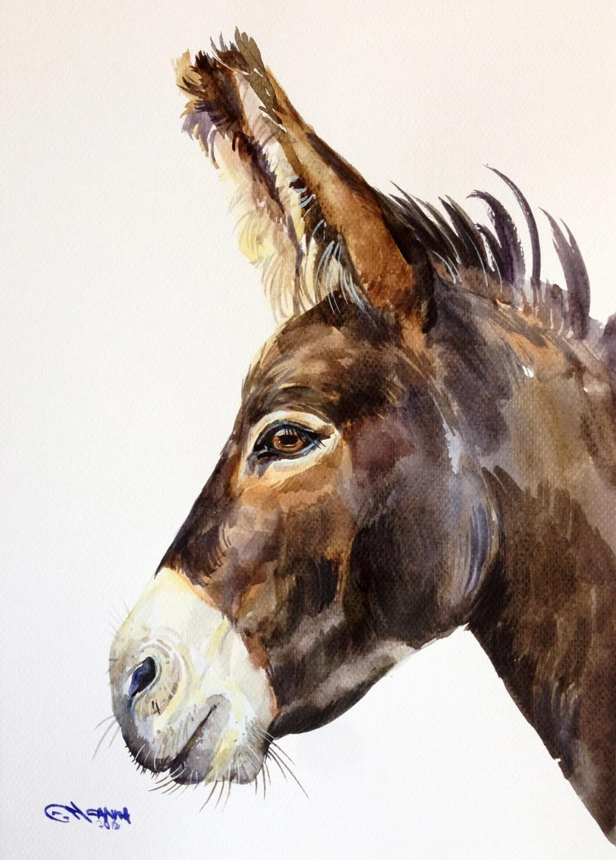 ORIGINAL WATERCOLOR PAINTING Donkey Portrait Farm Animal